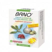 Vitamina B1 100mg *250cps