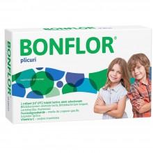 Bonflor 10 plicuri Fiterman...